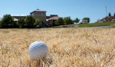dry-grass-golf-ball